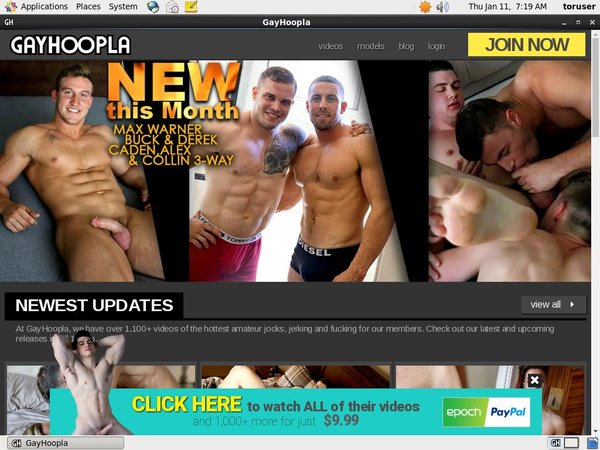 Free Working Gayhoopla.com Account